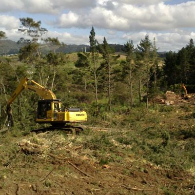 Shovel Logging