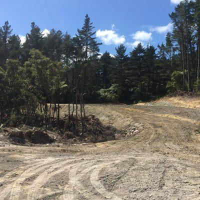 Waipapa forest roading