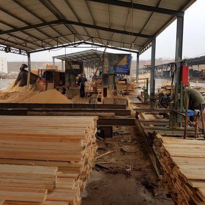 Chinese sawmill facility